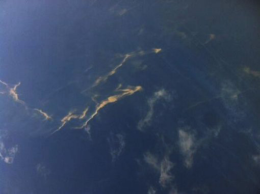 oil slick in the sea